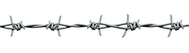 barbed-wire-3104944_640.png