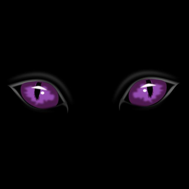 eyes-151201_640.png